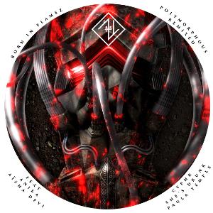 born-in-flamez-cover