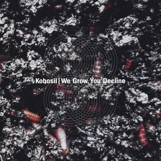 Kobosil-we-grow-you-decline-cover