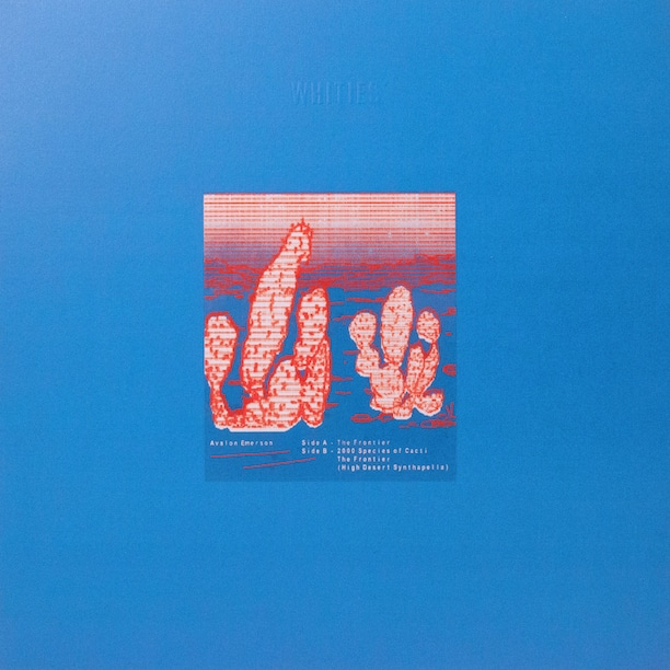 avalon-emerson-whities-006
