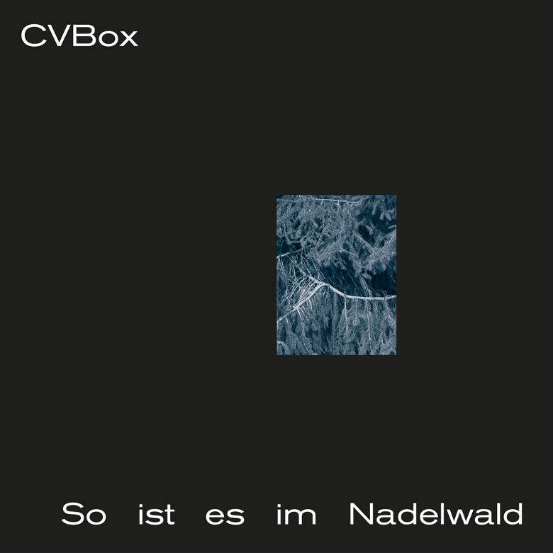 cvbox-so-ist-es-im-nadelwald
