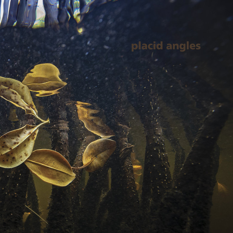 Placid Angles – Touch The Earth (Figure)