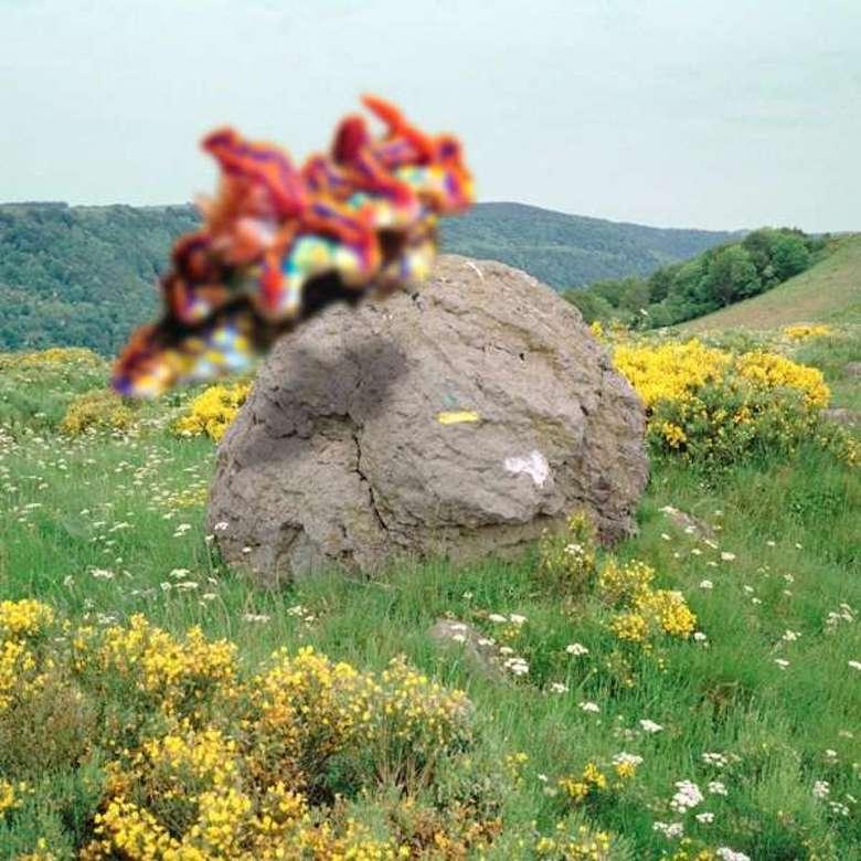 Joakim – Second Nature (Tigersushi)